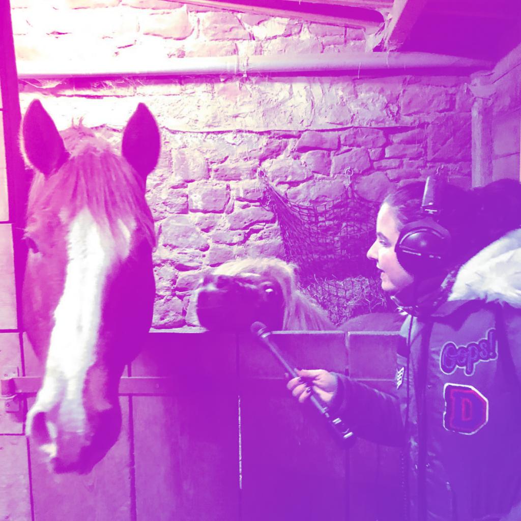 LIVE LOVE RIDE Folge 2 Pferdemädchen Podcast Sabine Blank Alexandra Klee