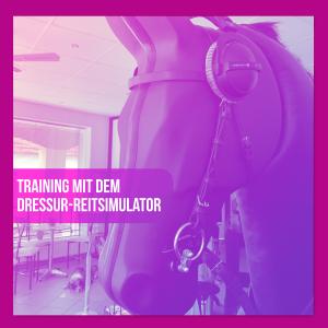 Pferdemädchen Podcast Dressur Reitsimulator Sabine Blank