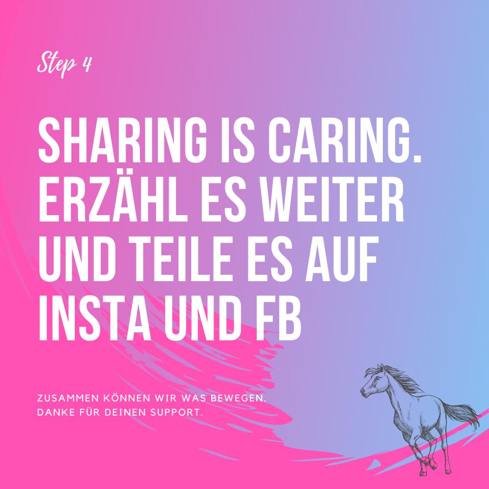 Charity Aktion Pferdemädchen Podcast Anleitung Step4